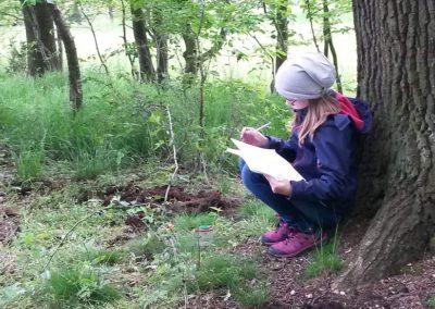 Exkursion in Wald und Wiese